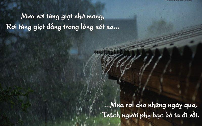 Tổng hợp những bài thơ hay về mưa thấm đẫm nỗi buồn