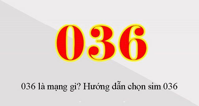 Huong Dan Chon Sim 036